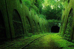 Abandoned-railroad-in-France