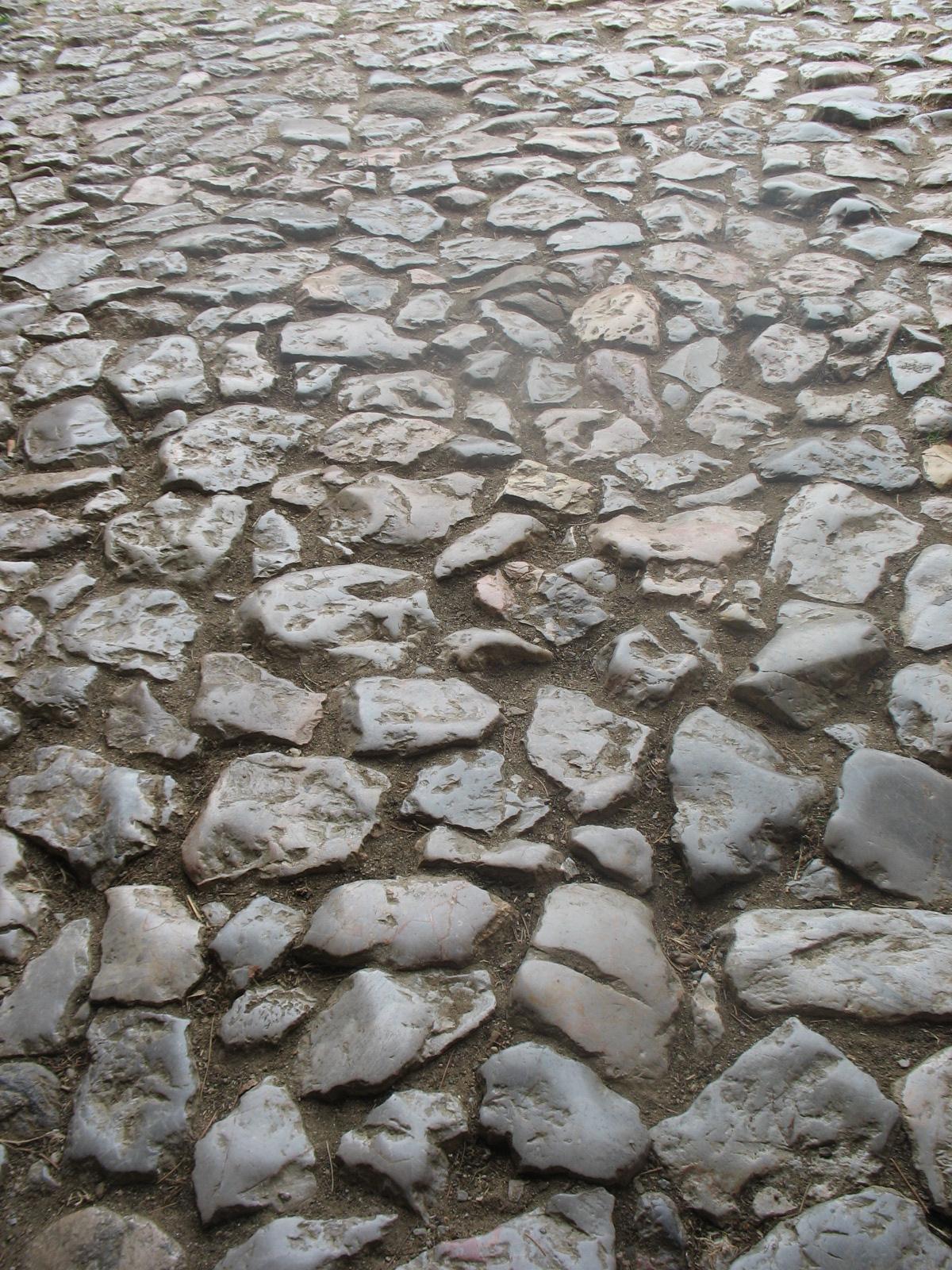 camino de piedras artesonja